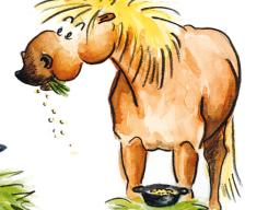 Webinar: Management vom Pferden mit EMS, IR oder Cushing