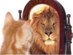 Webinar: Prioritäten setzen wie ein Löwe