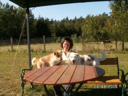 Webinar: Wohl bekomm's - Dein Hund ist, was er frisst!