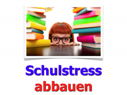 Webinar: Schulstress abbauen (Einzelwebinar)