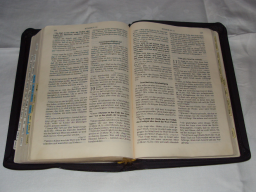Webinar: christliche Laiendogmatik -1.Teil A