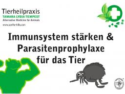 Webinar: Immunsystem und Parasitenprophylaxe für das Tier