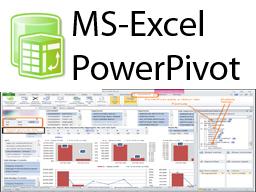 MS PowerPivot (Vollzeit)