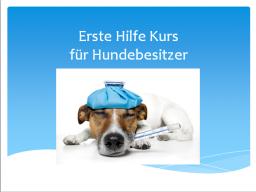Webinar: Erste-Hilfe-Kurs für Hundebesitzer