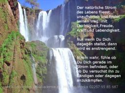 Webinar: Leichter leben und dein wahres Ziel erreichen, mit dem natürlichen Fluss des Lebens in das Jahr 2014 starten.