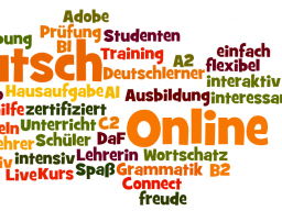 Webinar: Live Lehrer online