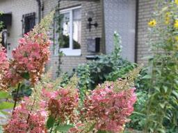 Webinar: Gartenfreuden - bio + pflegeleicht