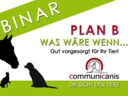 Webinar: Plan B - was wäre wenn... ?
