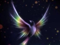 Energieübertragung und Botschaften der geistigen Welt nur für dich - Kurzberatung - Einzeltermin