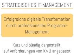 Webinar: Erfolgreiche Transformation durch professionelles Programm-Management