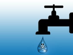 Webinar: Gesundes Wasser- Warum Wasser filtern?