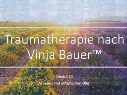 Webinar: Traumatherapie nach Vinja Bauer (TM) Block 2