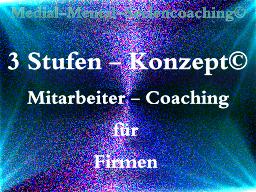 """Webinar: Das """"3 Stufen-Konzept©"""""""