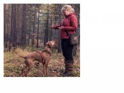 Webinar: Belohnungen & Beschäftigung für jagdlich motivierte Hunde