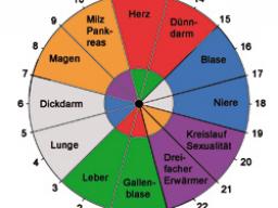 Webinar: Die Organuhr - Leben im Takt der inneren Uhr