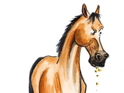 Webinar: Leberprobleme beim Pferd - erkennen und sinnvoll entgiften