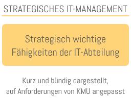 Webinar: Ihr unternehmensinternes IT-Team: Welches ist die strategisch sinnvolle Positionierung, welche Fähigkeiten sollte sie haben?