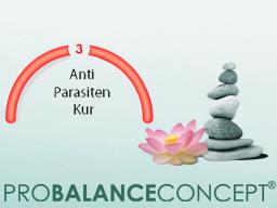 Webinar: Basiswissen Stoffwechsel und Entgiftung - 3.Schritt: Anti-Parasiten-Kur
