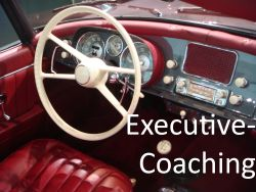 Webinar: Executive-Coaching Online