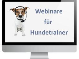 Webinar: Erfolgreiches Marketing als Hundetrainer - Basics