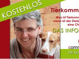 Webinar: Tierkommunikation - Chancen & Möglichkeiten