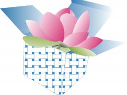 Webinar: Warum Hochsensibilität ein Geschenk sein kann!