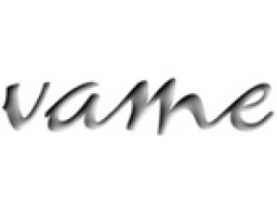 "Webinar: vame-Vorlesung FB ""Präsentation"""