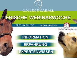 Webinar: Wunschberuf Pferdeosteopath | Referentin Angélique Behrens