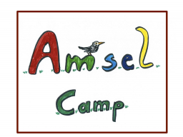 Webinar: Das Amsel Camp: 4 Storys - 4 Wochen - 40 Kunden