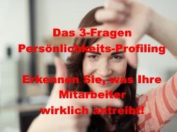 """Webinar: """"Das 3 Fragen-Persönlichkeits-Profiling"""" - Erkennen Sie, was Ihre Mitarbeiter wirklich antreibt!"""