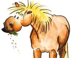 """Webinar: Nährstofflehre in der Pferdefütterung: """"Was braucht Purzel?"""" -Teil 3"""