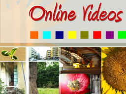 Webinar: Ihr Online Video