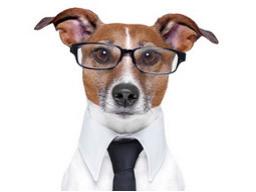 Webinar: Welcher Beruf passt zu mir?