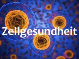 Webinar: Verjüngung durch FGF2 - Natürliche Zellaktivierung!