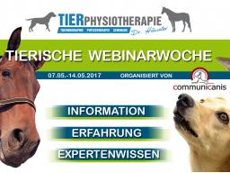 Webinar: Schmerzen beim Tier verstehen (Dr. Kirsten Häusler)