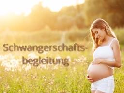 Webinar: Schwangerschaft - intelligent begleiten