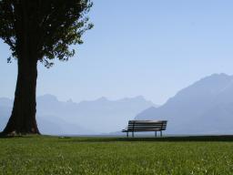Webinar: Webinar in den Ferien - Erholung für Körper, Geist und Seele