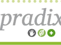 Webinar: PRADIX- Einführung in die Funktionsweise der Online-Plattform