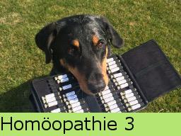 Webinar: Homöopathie 3