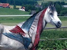 Webinar: Die Muskulatur des Pferdes Teil 2 - Anatomie und Biomechanik der Vorhand