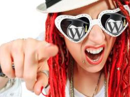 Webinar: Rocking WordPress - Fit für große Einkommensströme??