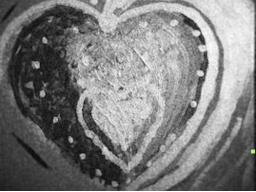Webinar: Erzähl mir deinen Herzenswunsch