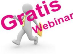 Webinar: Erfolg im Verkauf -  Umsatzfürsten und Hoffnungsträger - warum?