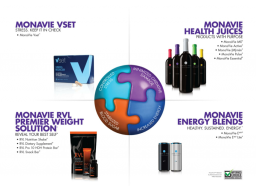 Webinar: MonaVie Success