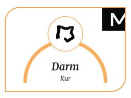 Webinar: Die Magen-Darm-Kur Teil-1 (Wiederholung)