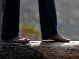Webinar: Das Leben in Balance - Für was wir leben