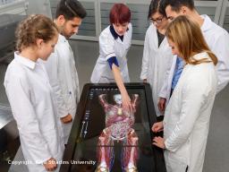 Medizin international studieren: Studienmöglichkeiten in der EU