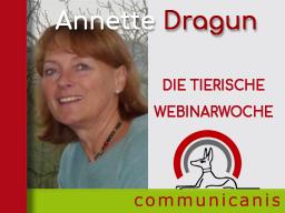 Webinar: Referentin Annette Dragun > Allergien beim Hund verstehen und therapieren > 2 Webinare 1 Preis