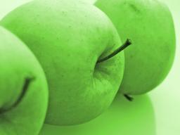 Webinar: Nahrungsmittel sind keine Lebensmittel