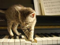 Webinar: Klavier lernen-Tipps & Tricks vom Profi